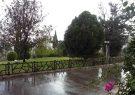 بارش باران از روز دوشنبه در گیلان
